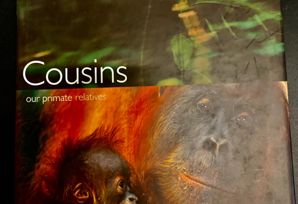 Cousins: Our Primate Relatives by Louise Barrett