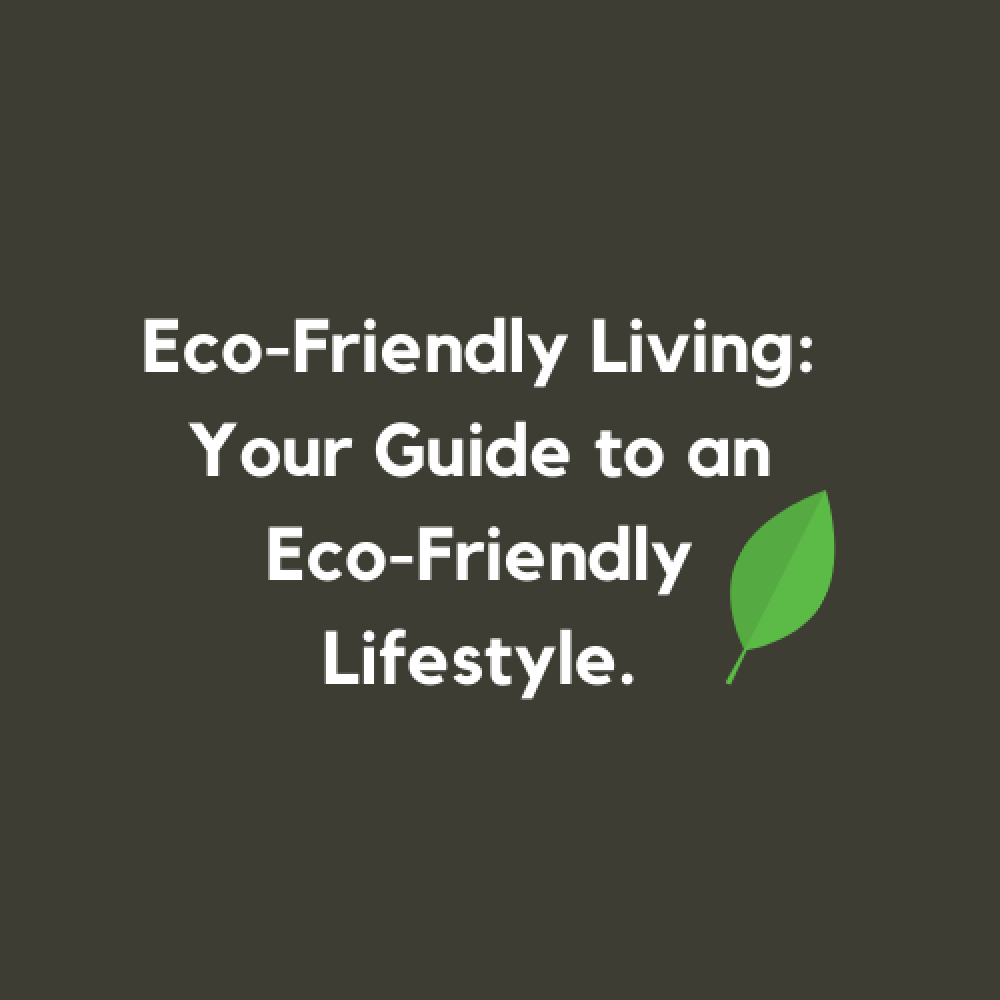 Eco-Friendly Living: Your Guide to an Eco-Friendly Lifestyle