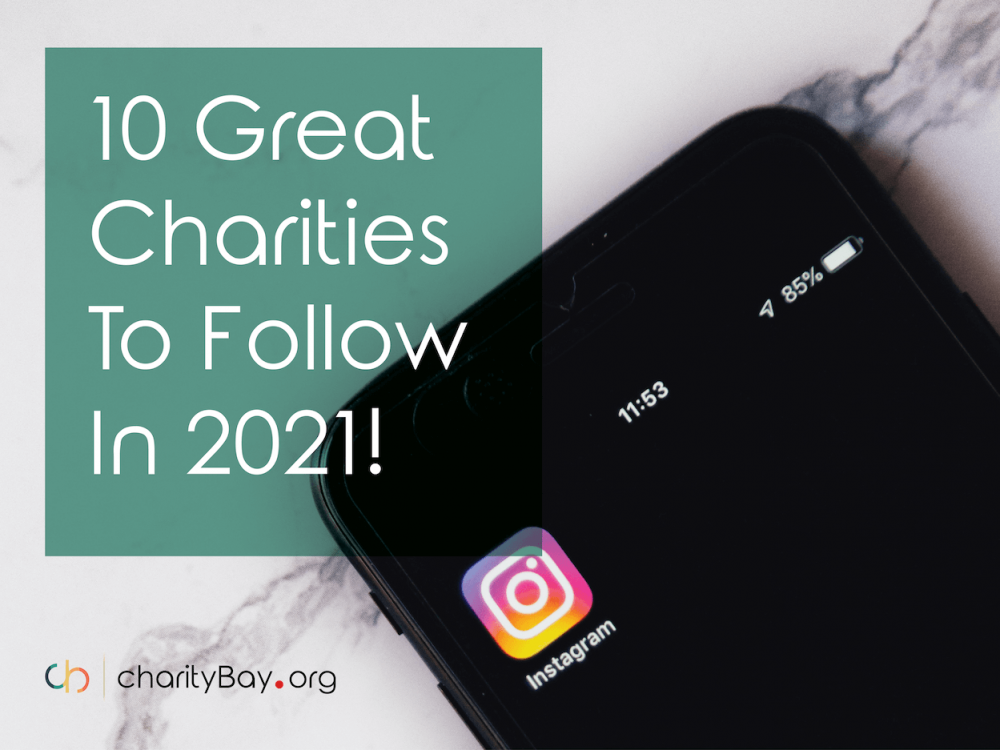 10 Great Charities to Follow in 2021!