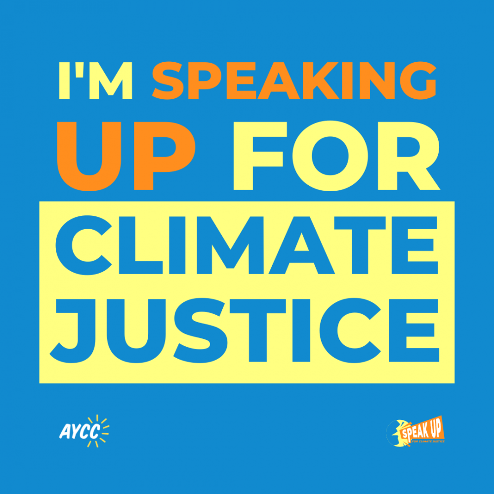 Australian Youth Climate Coalition Auction is Live Now!
