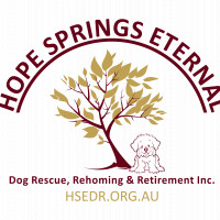 Hope Springs Eternal Dog Rescue, Rehoming and Retirement Inc